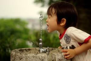 はじめの水飲み 金井