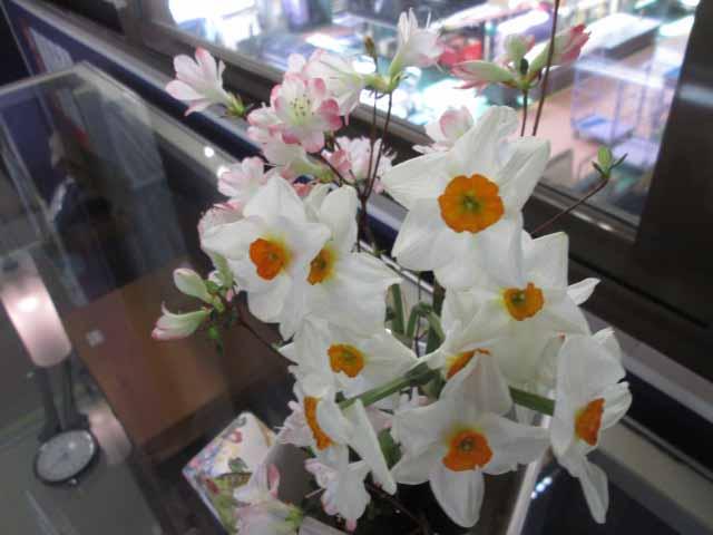 お花クラブ 写真 (5)